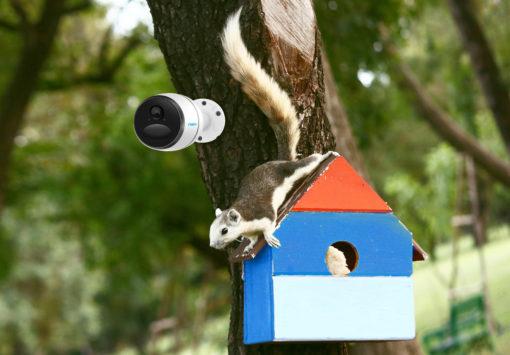 LTE kamera Reolink Go